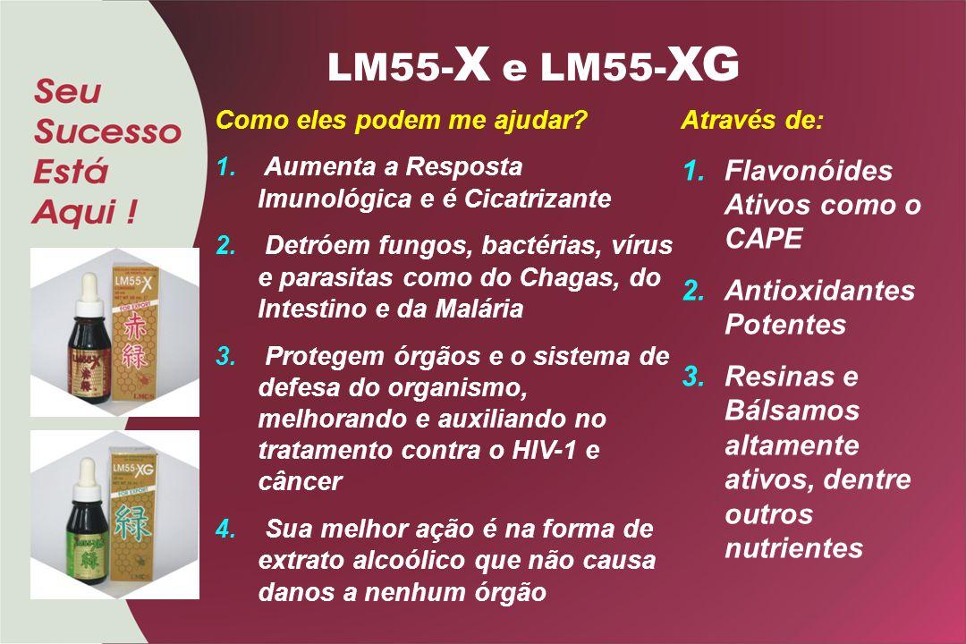 LM55-X e LM55-XG Flavonóides Ativos como o CAPE Antioxidantes Potentes