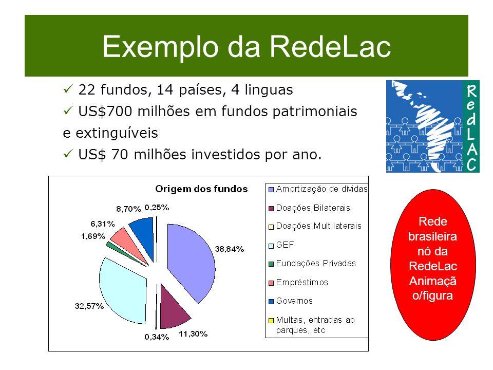 Rede brasileira nó da RedeLac