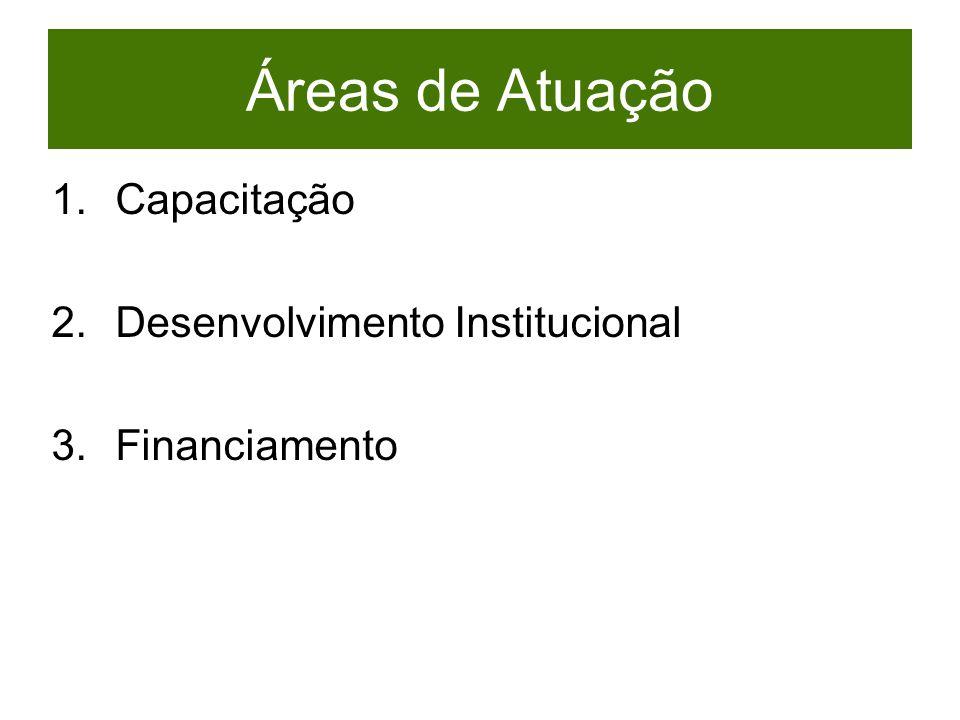 Áreas de Atuação Capacitação Desenvolvimento Institucional
