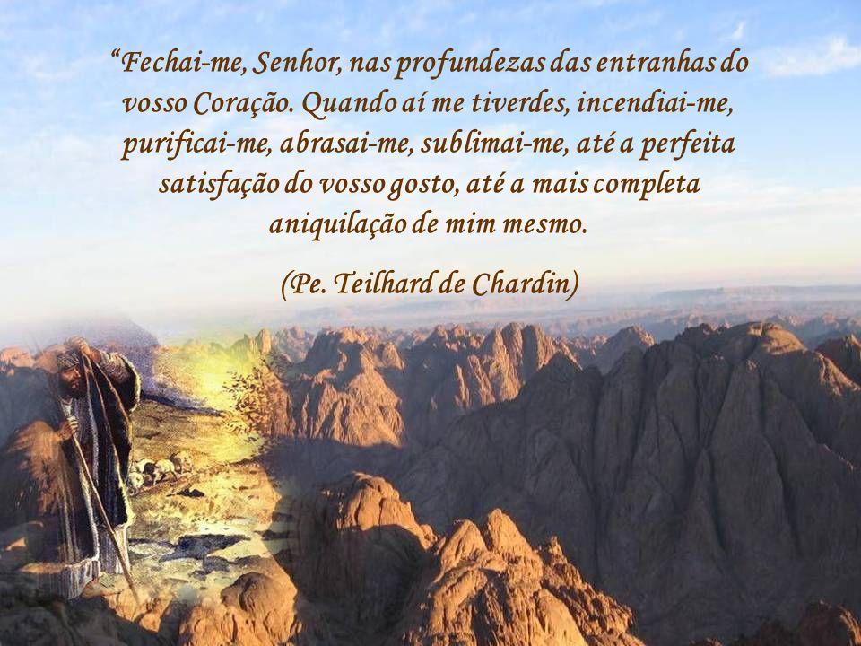 (Pe. Teilhard de Chardin)
