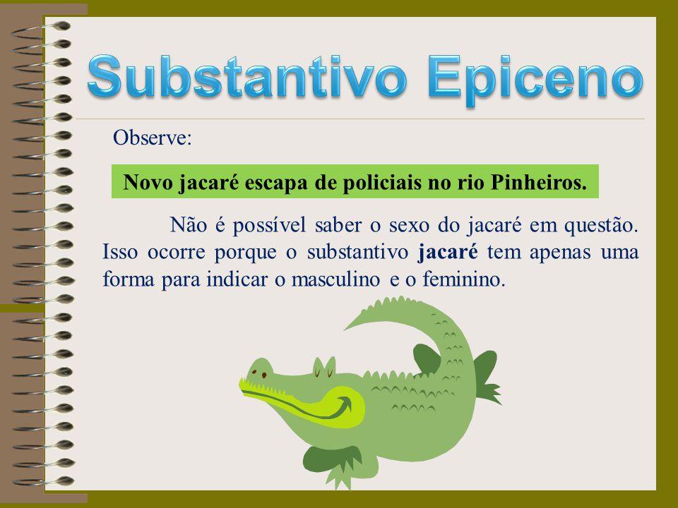Novo jacaré escapa de policiais no rio Pinheiros.