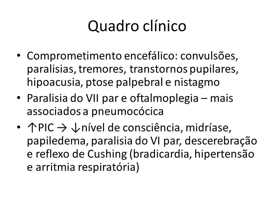 Quadro clínico Comprometimento encefálico: convulsões, paralisias, tremores, transtornos pupilares, hipoacusia, ptose palpebral e nistagmo.