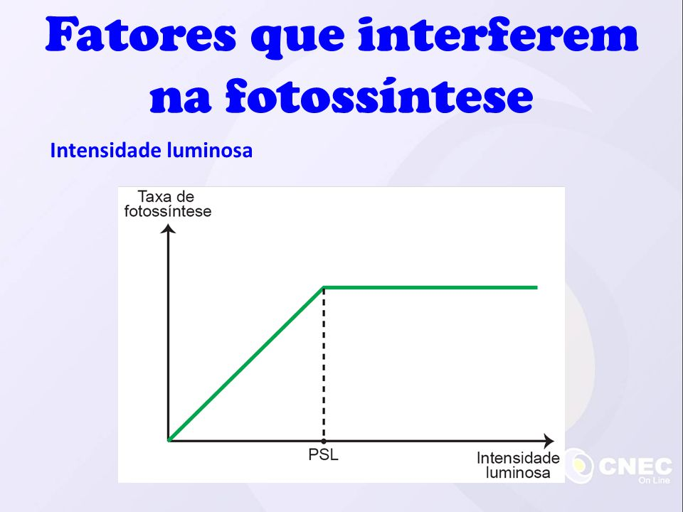 Fatores que interferem na fotossíntese