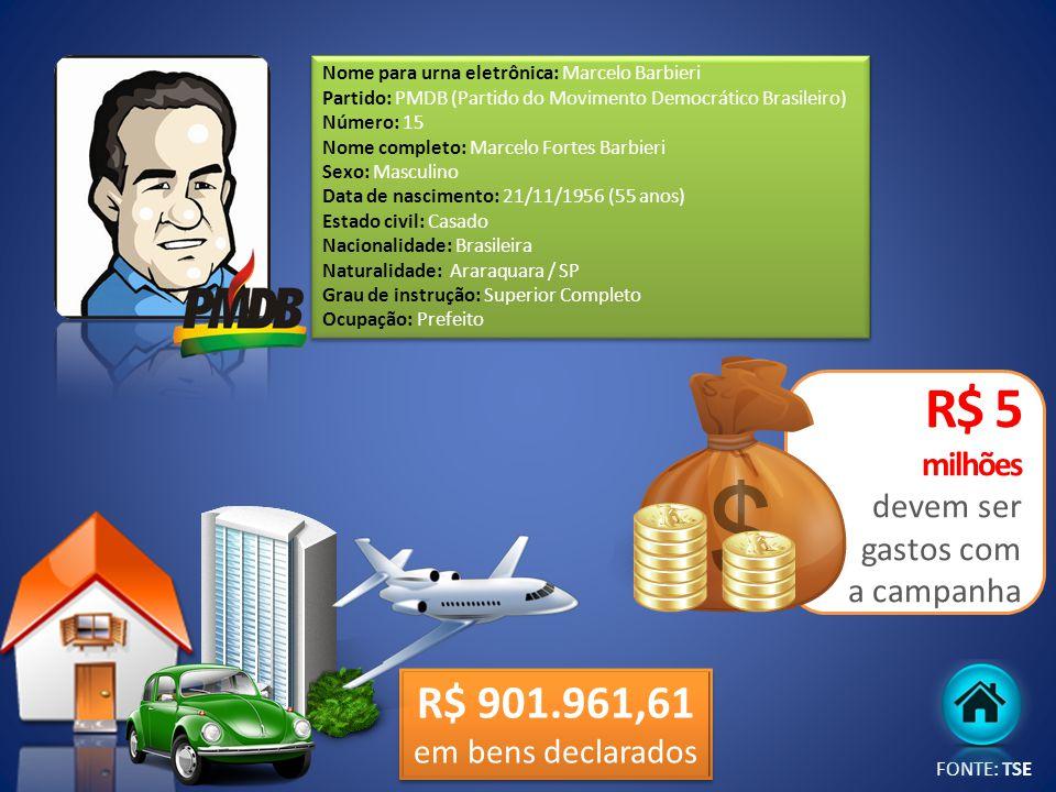 R$ 5 milhões devem ser gastos com a campanha