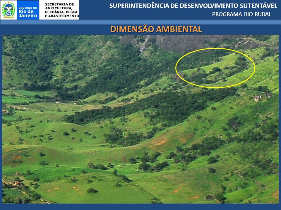 PROGRAMA RIO RURAL DIMENSÃO AMBIENTAL