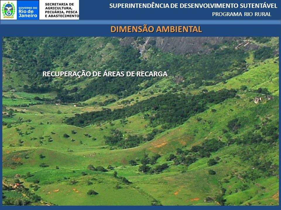 PROGRAMA RIO RURAL DIMENSÃO AMBIENTAL RECUPERAÇÃO DE ÁREAS DE RECARGA
