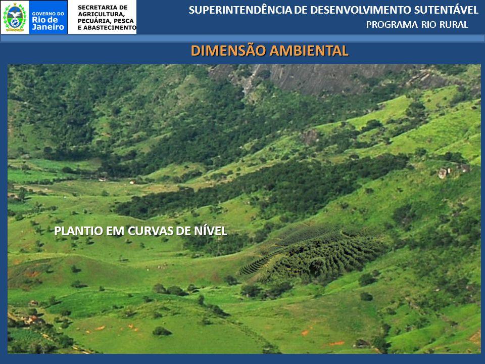 PROGRAMA RIO RURAL DIMENSÃO AMBIENTAL PLANTIO EM CURVAS DE NÍVEL