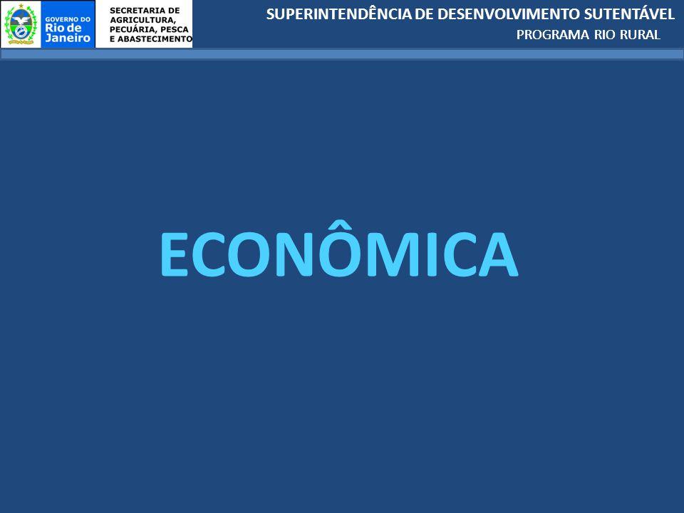PROGRAMA RIO RURAL ECONÔMICA