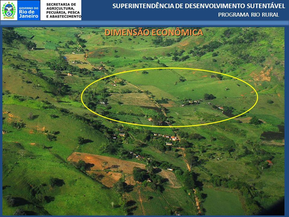 PROGRAMA RIO RURAL DIMENSÃO ECONÔMICA