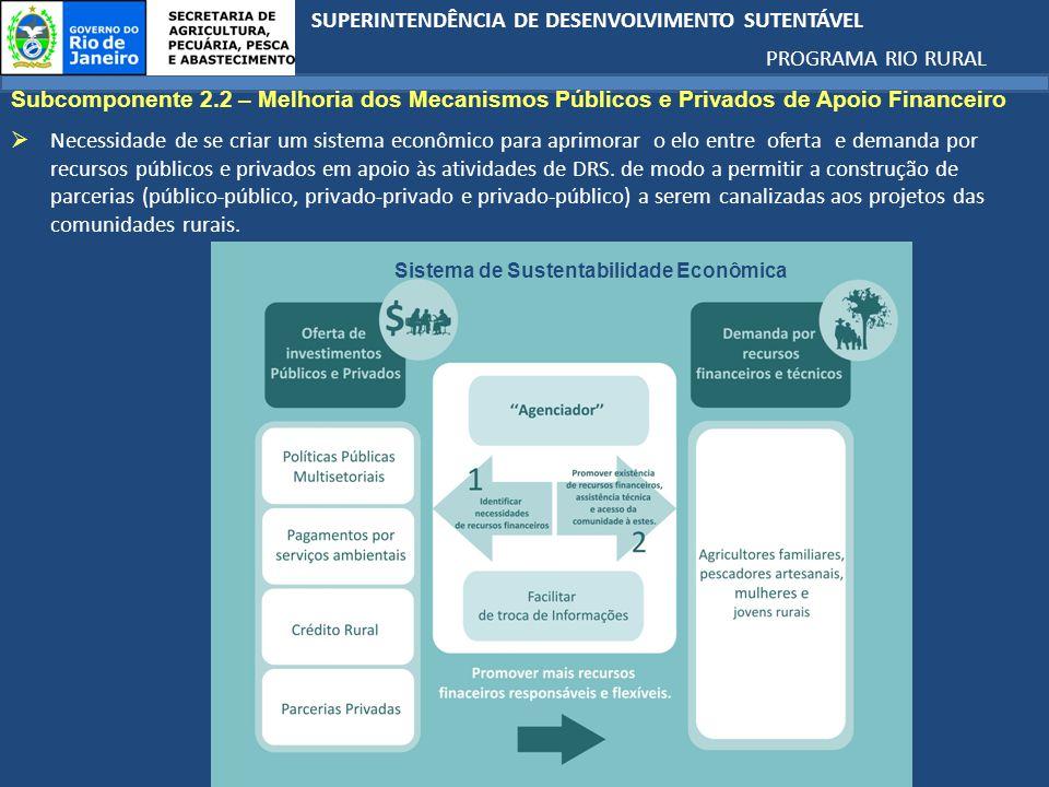 Subcomponente 2.2 – Melhoria dos Mecanismos Públicos e Privados de Apoio Financeiro