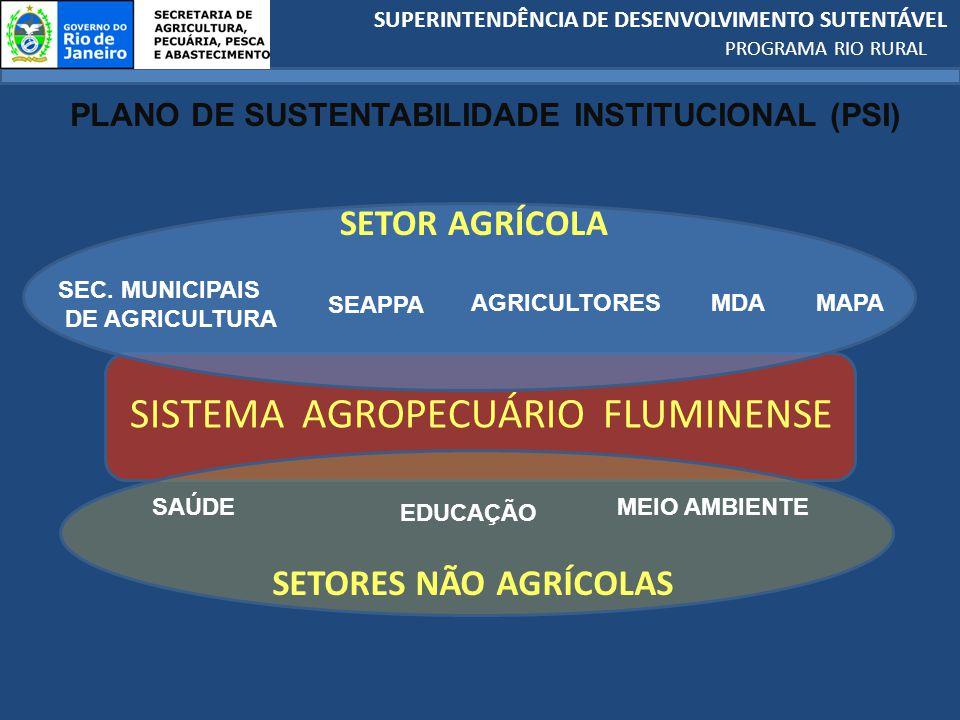 PLANO DE SUSTENTABILIDADE INSTITUCIONAL (PSI)