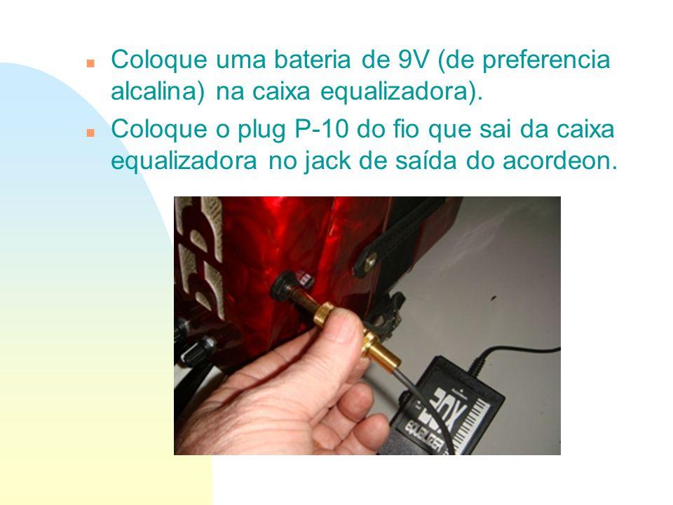 Coloque uma bateria de 9V (de preferencia alcalina) na caixa equalizadora).