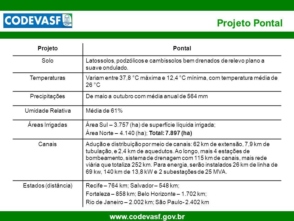 Projeto Pontal Projeto Pontal Solo