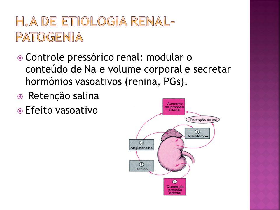 h.A de etiologia renal-patogenia