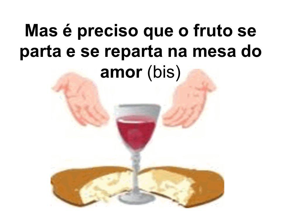 Mas é preciso que o fruto se parta e se reparta na mesa do amor (bis)