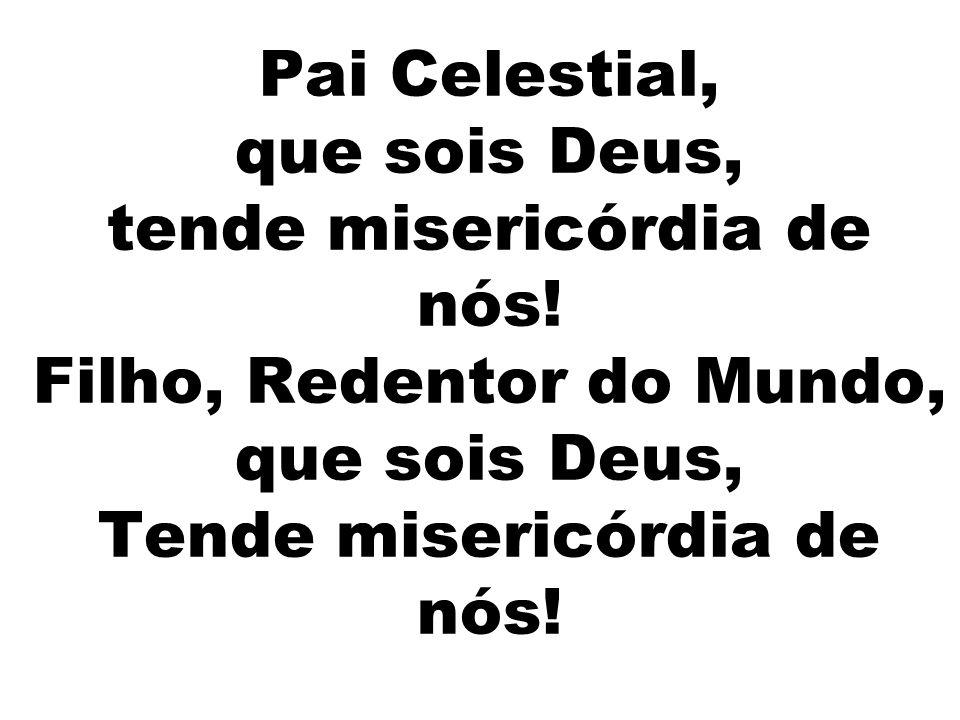 Pai Celestial, que sois Deus, tende misericórdia de nós