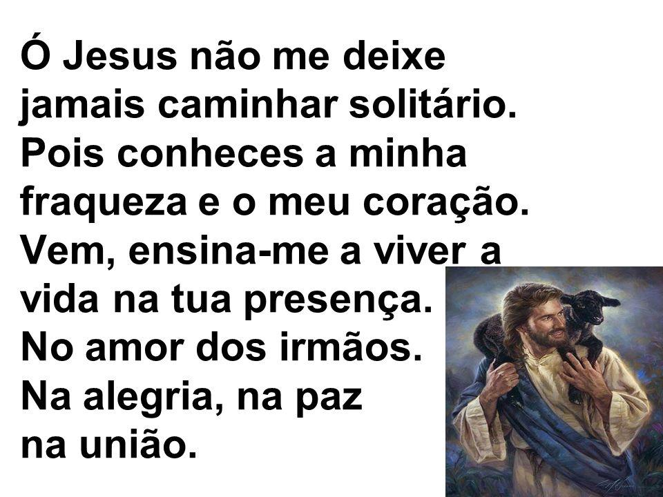 Ó Jesus não me deixe jamais caminhar solitário