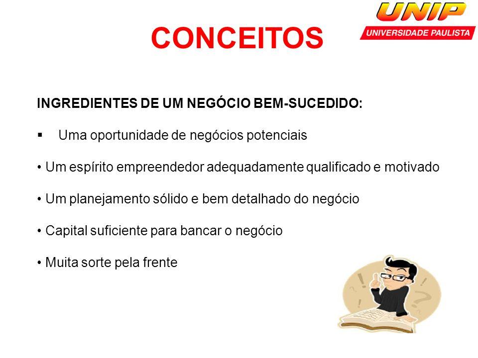 CONCEITOS INGREDIENTES DE UM NEGÓCIO BEM-SUCEDIDO: