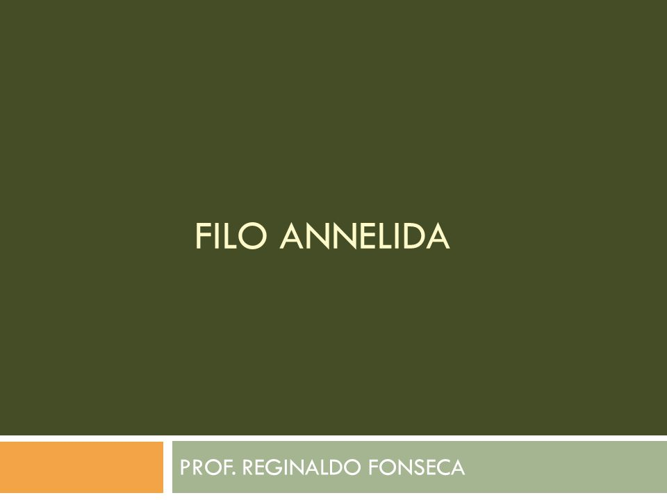 PROF. REGINALDO FONSECA