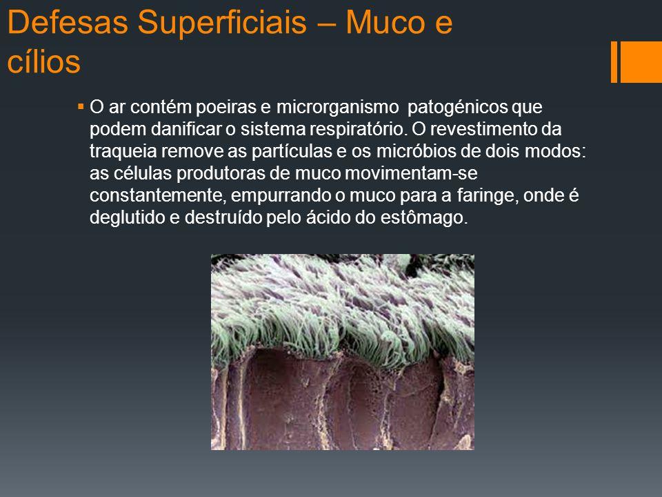 Defesas Superficiais – Muco e cílios