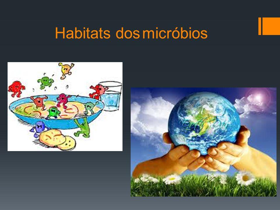 Habitats dos micróbios