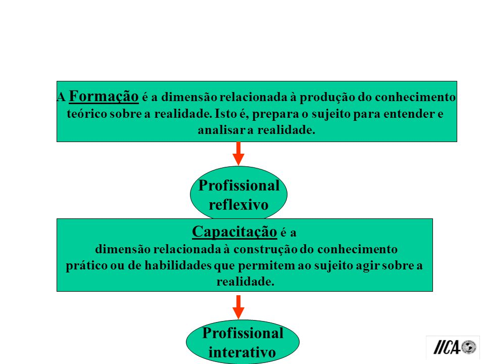 Profissional reflexivo Capacitação é a Profissional interativo