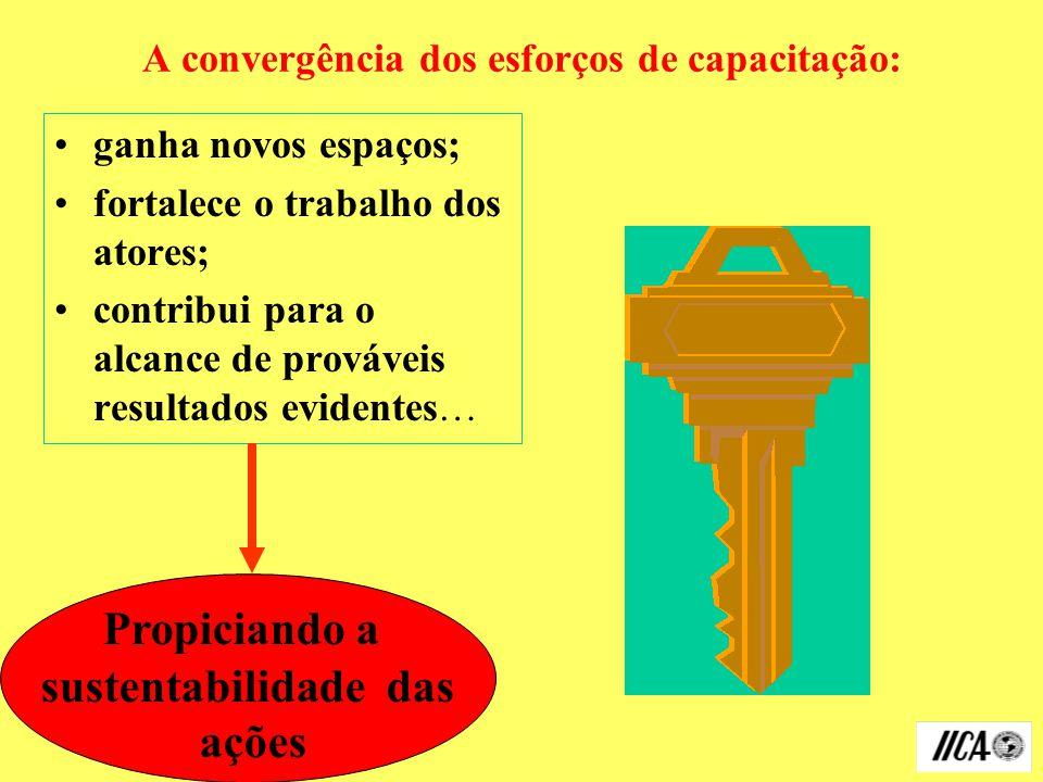 A convergência dos esforços de capacitação: