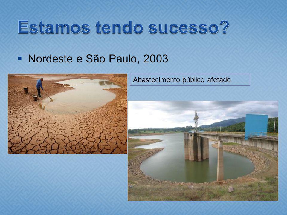 Estamos tendo sucesso Nordeste e São Paulo, 2003