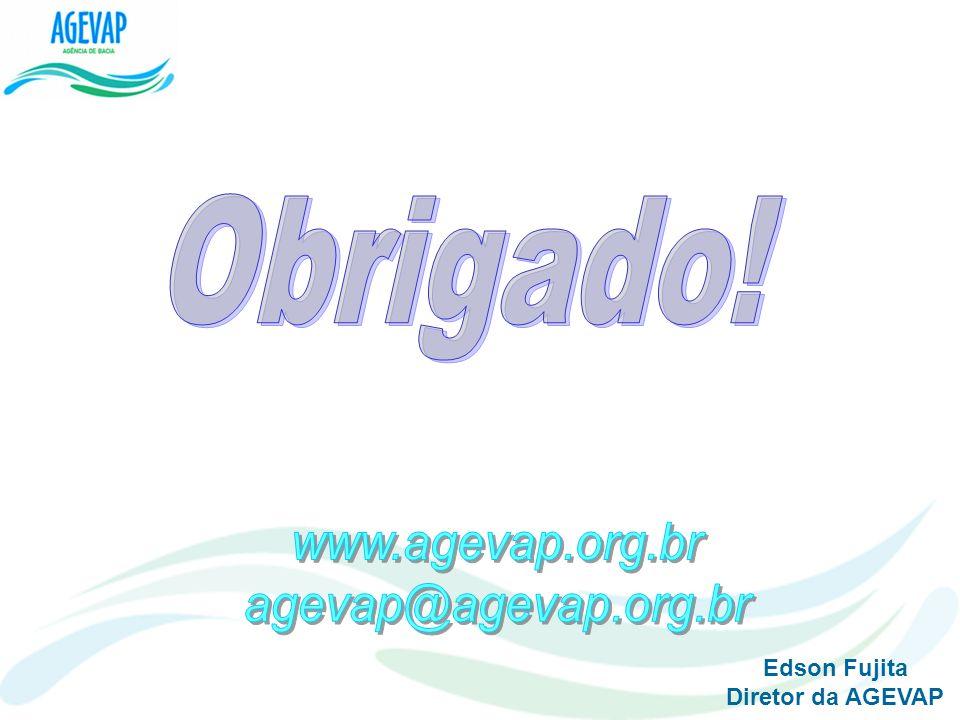 Obrigado! www.agevap.org.br agevap@agevap.org.br Edson Fujita