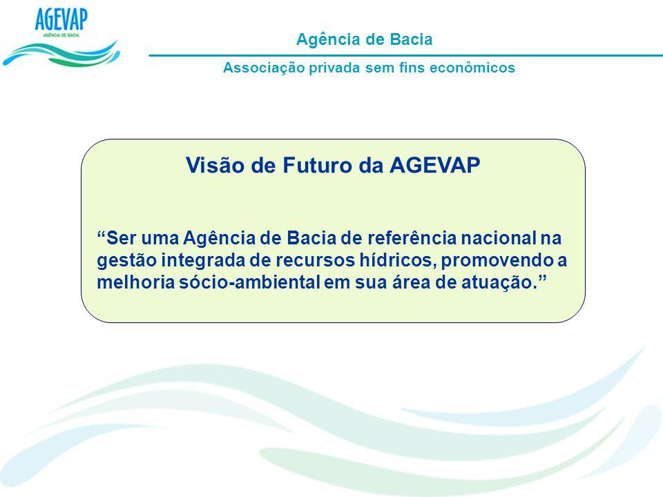 Associação privada sem fins econômicos Visão de Futuro da AGEVAP