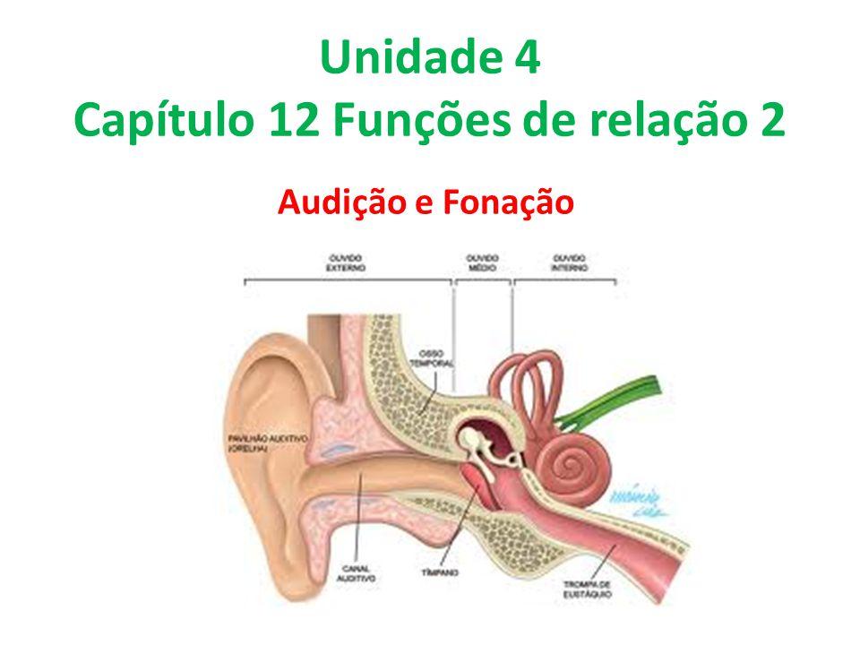 Unidade 4 Capítulo 12 Funções de relação 2