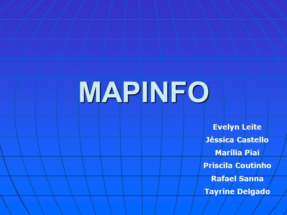 MAPINFO Evelyn Leite Jéssica Castello Marília Piai Priscila Coutinho
