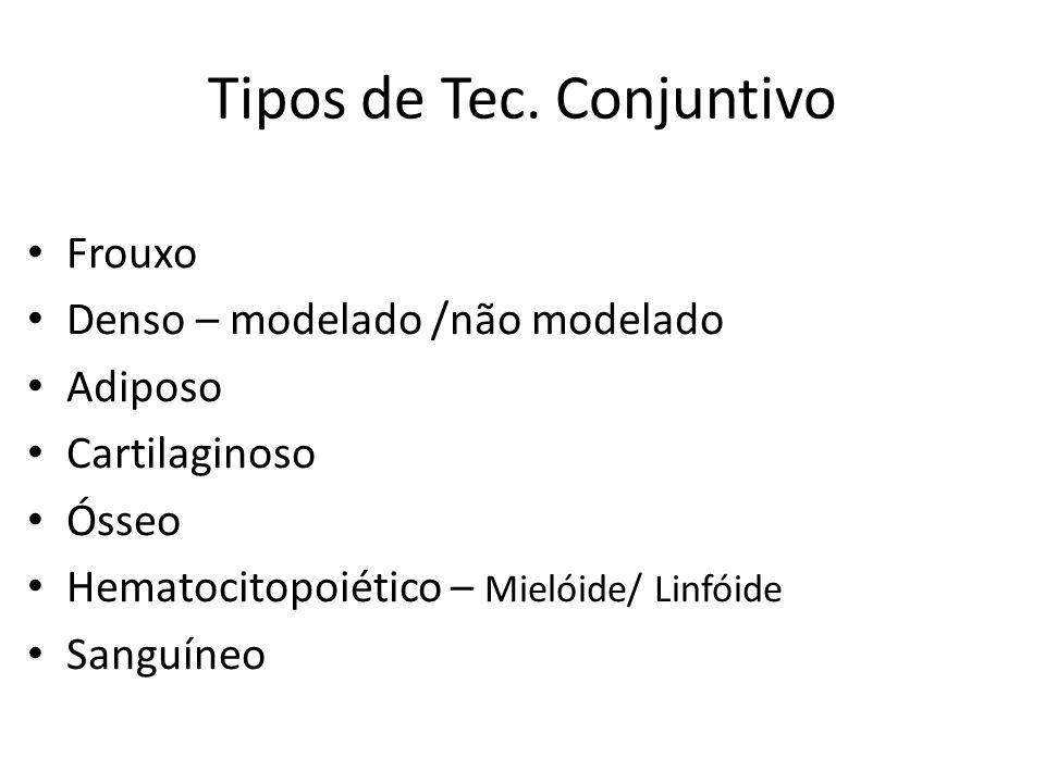 Tipos de Tec. Conjuntivo