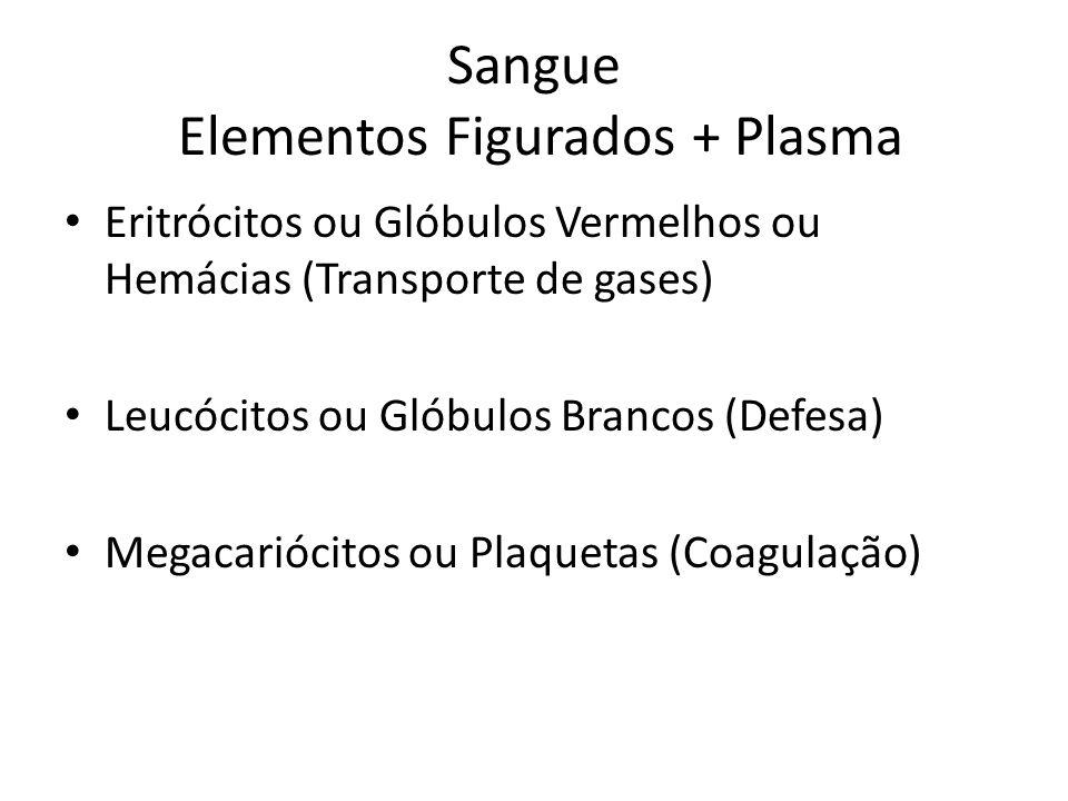 Sangue Elementos Figurados + Plasma