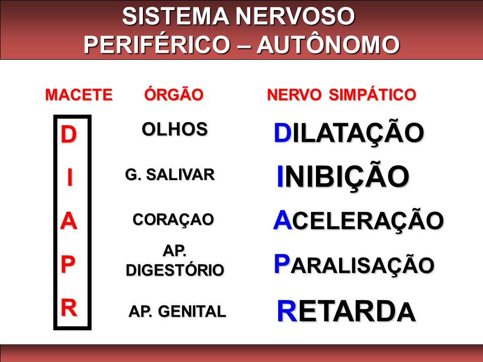 INIBIÇÃO RETARDA DILATAÇÃO ACELERAÇÃO PARALISAÇÃO SISTEMA NERVOSO