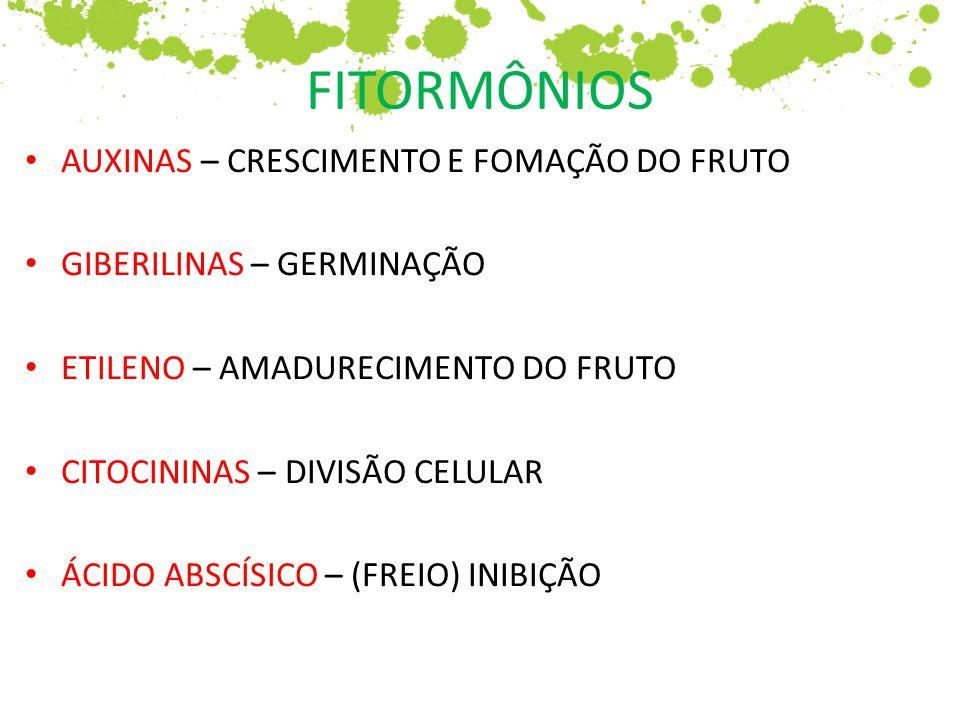 FITORMÔNIOS AUXINAS – CRESCIMENTO E FOMAÇÃO DO FRUTO