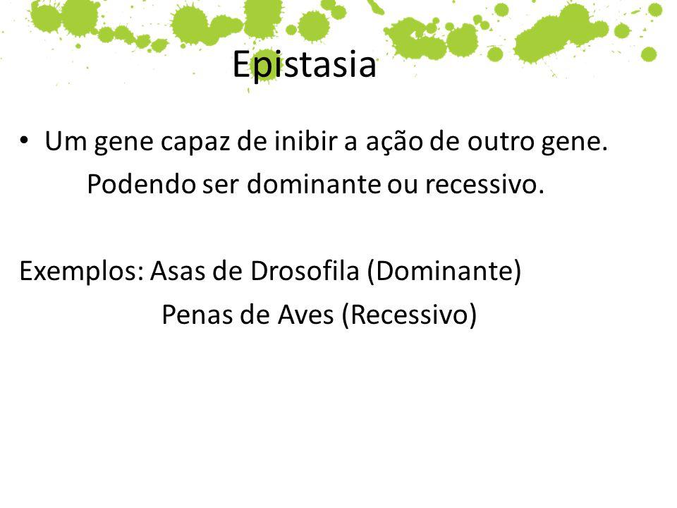 Epistasia Um gene capaz de inibir a ação de outro gene.