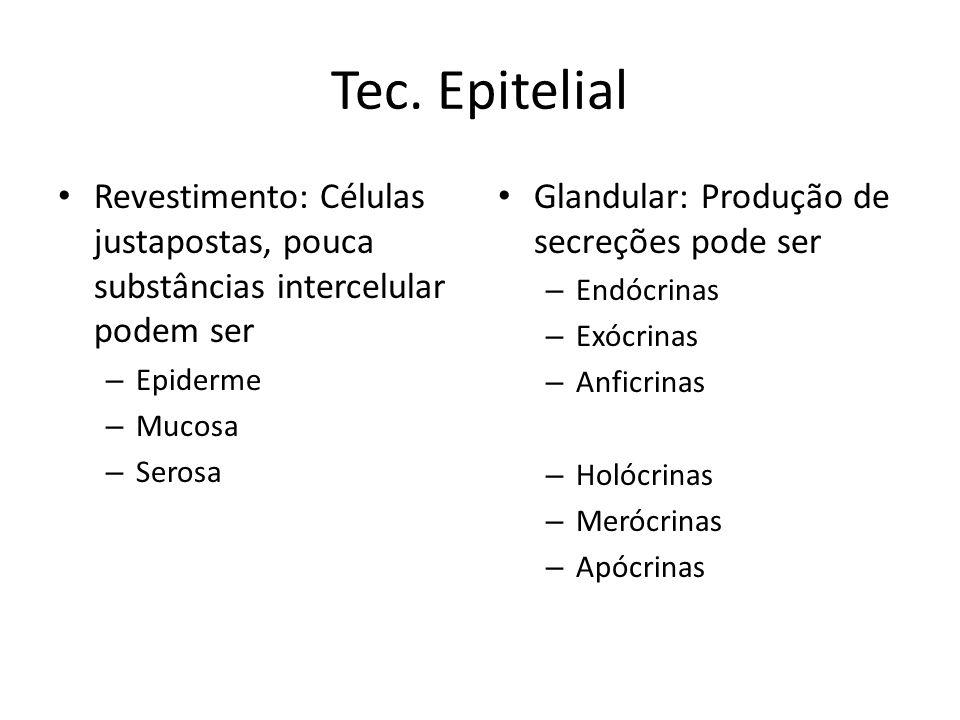 Tec. Epitelial Revestimento: Células justapostas, pouca substâncias intercelular podem ser. Epiderme.