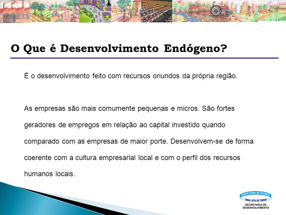 O Que é Desenvolvimento Endógeno