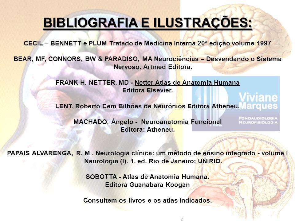 BIBLIOGRAFIA E ILUSTRAÇÕES: