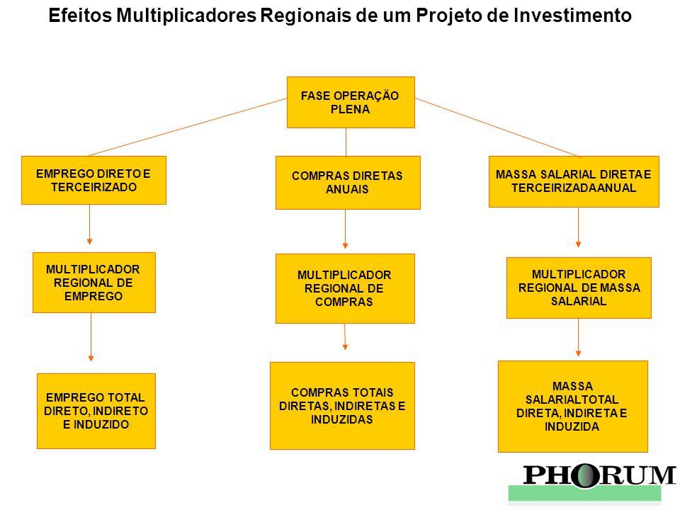 Efeitos Multiplicadores Regionais de um Projeto de Investimento