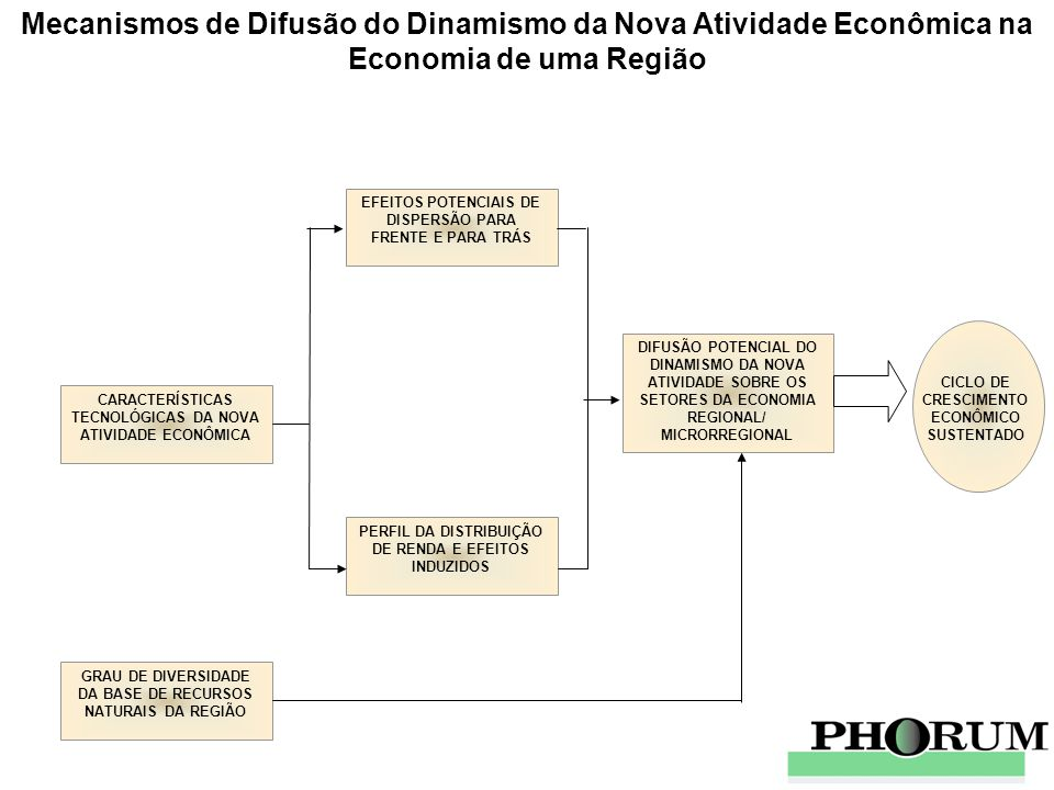 Mecanismos de Difusão do Dinamismo da Nova Atividade Econômica na Economia de uma Região