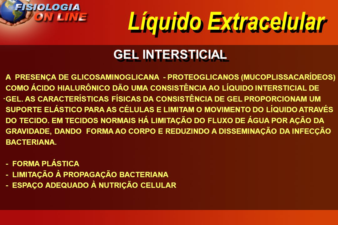 Líquido Extracelular GEL INTERSTICIAL ·