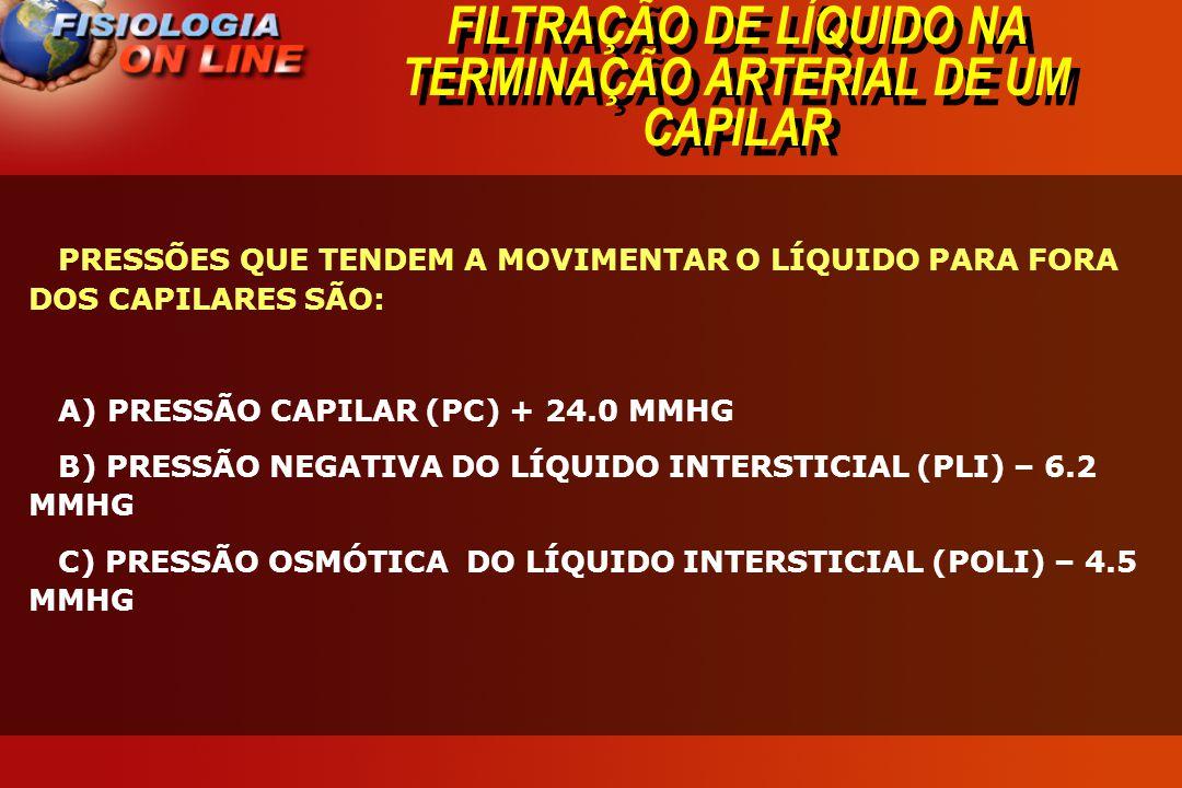 FILTRAÇÃO DE LÍQUIDO NA TERMINAÇÃO ARTERIAL DE UM CAPILAR