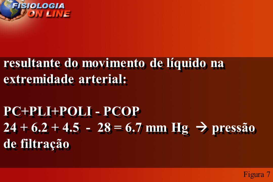 resultante do movimento de líquido na extremidade arterial: