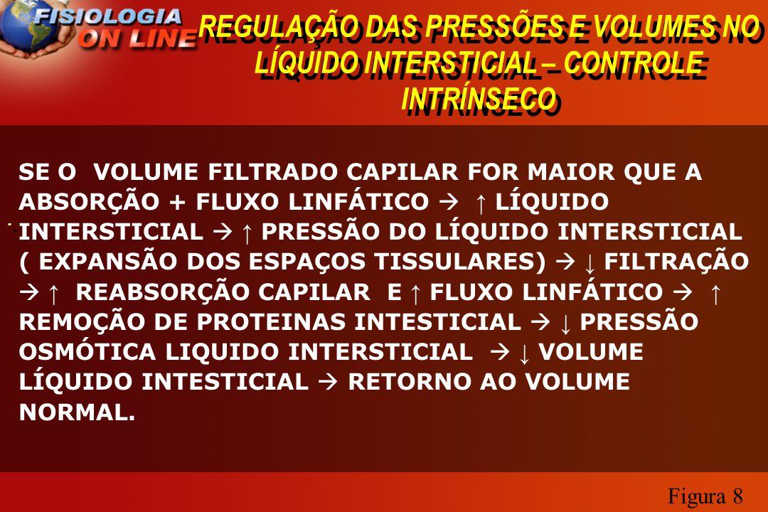 REGULAÇÃO DAS PRESSÕES E VOLUMES NO LÍQUIDO INTERSTICIAL – CONTROLE INTRÍNSECO