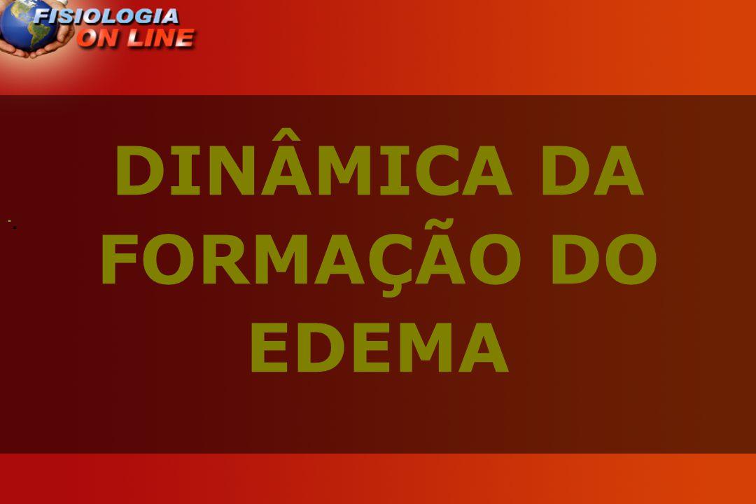 DINÂMICA DA FORMAÇÃO DO EDEMA