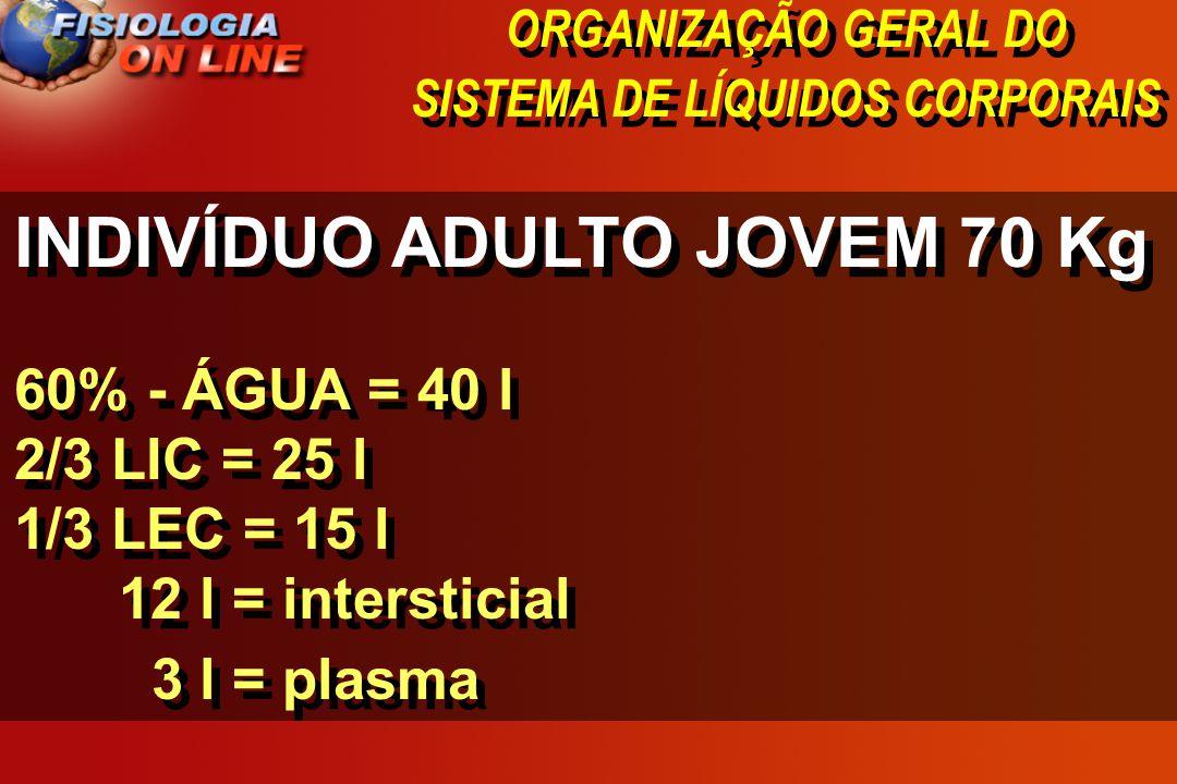 ORGANIZAÇÃO GERAL DO SISTEMA DE LÍQUIDOS CORPORAIS