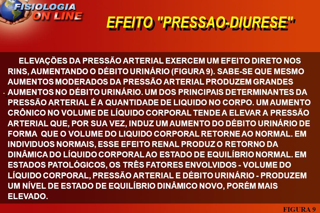 EFEITO PRESSAO-DIURESE