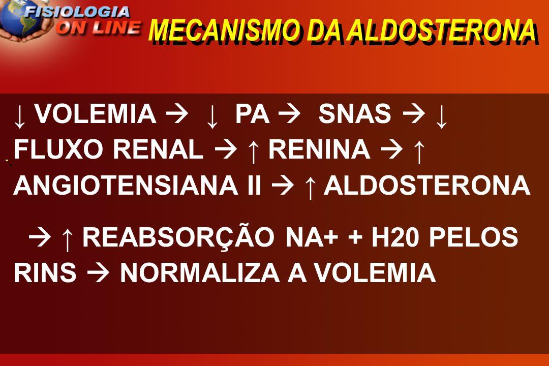 MECANISMO DA ALDOSTERONA